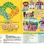 たわわ祭2015のパンフレット