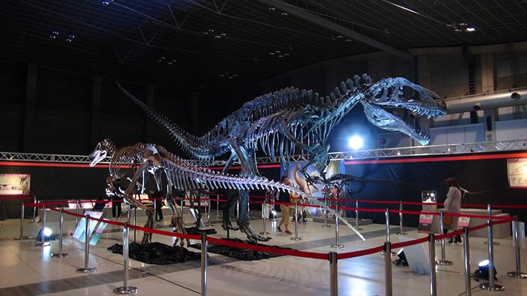 えひめ大恐竜博03