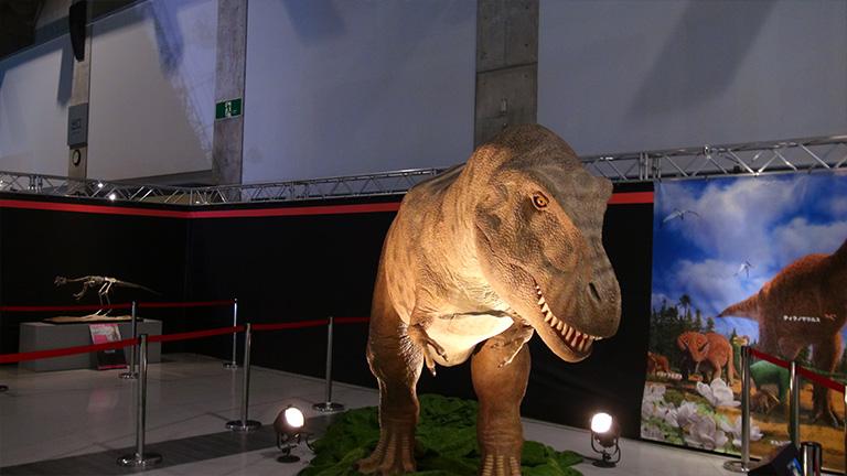 えひめ大恐竜博09