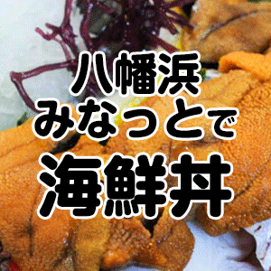 八幡浜みなっとで食事(海鮮丼)